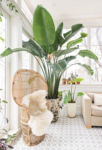 Ideas para decorar con el mítico sillón Emmanuelle