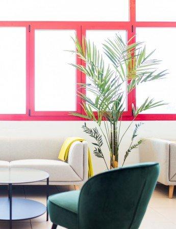 Nuevo proyecto Antic&Chic: las oficinas de Pareteum