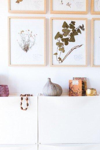 Una Gallery Wall de láminas de herbario