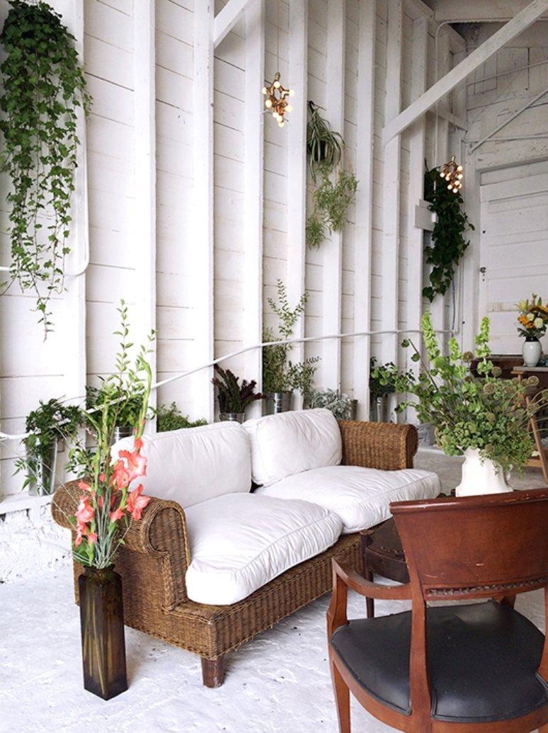 Inspiración para decorar con plantas