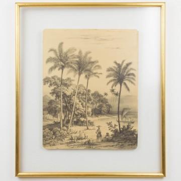 Antigua ilustración de un paisaje africano, s. XIX