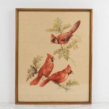 Lámina de pájaros rojos